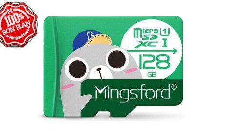 Carte MicroSDXC Mingsford 128 Go class10