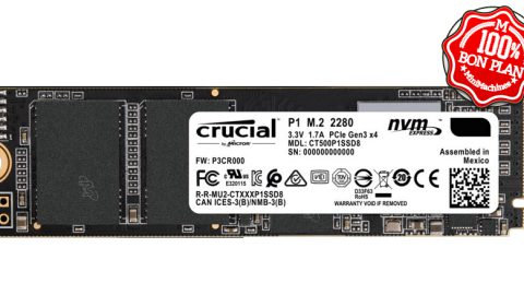 SSD M.2 NVMe Crucial P1 500 Go