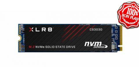 SSD M.2 2280 500 Go PNY CS3030