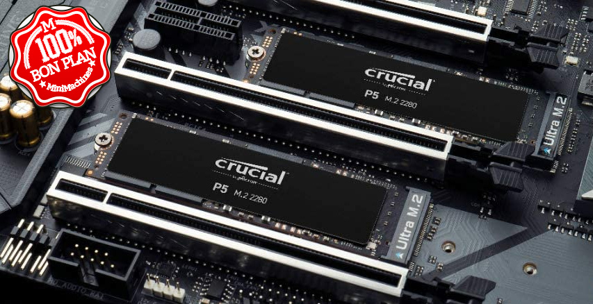 SSD Crucial P5 500 Go NVMe PCIe