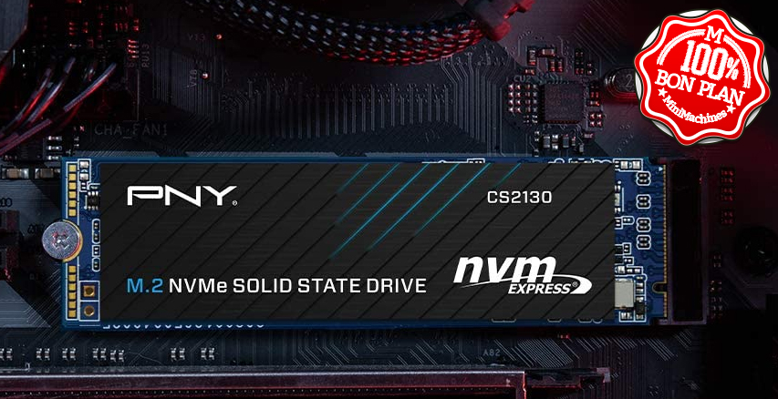 SSD PNY CS2130 1 To M.2 PCIe NVMe